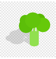 broccoli isometric icon vector image
