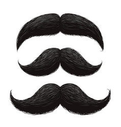 funny retro hair mustaches set vector image