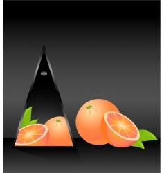 fruity geometric vector image