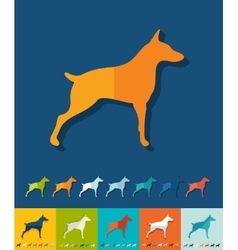 Flat design doberman vector