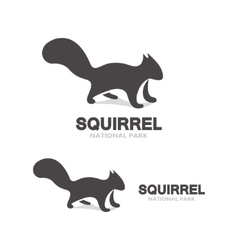 Gray squirrel logo vector