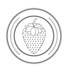 Delicious strawberry fruit vector