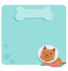 pity terrier dog at empty board vector image vector image