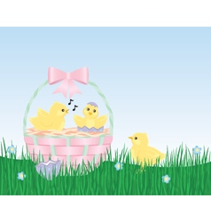 Easter chicks are born in an easter basket vector