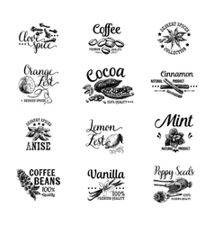 Set of dessert spices logos labels badges vector