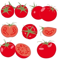 Tomato set tomatoes and slice isolated vector