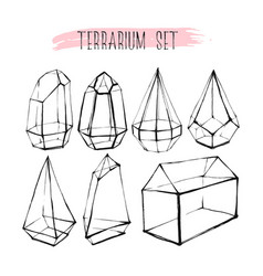 Hand drawn graphic line glass terrarium vector