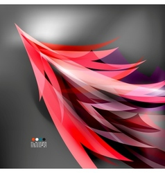 Colorful stylized parrot tail modern background vector image