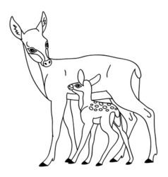 Deer with baby vector