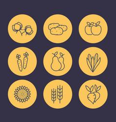 Harvest line icons set organic farm food vector