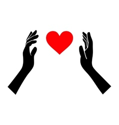 Heart in hands silhouette on white background vector