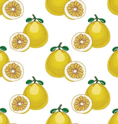 Seamless pattern with pomelos vector