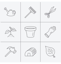 Sprout plant scissors and pot icons vector image vector image
