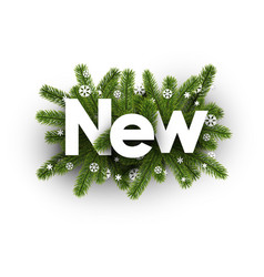 winter new sign with snowflakes vector image