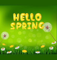 Beautiful spring or summer season nature backgroun vector