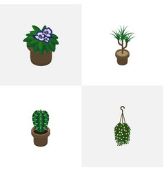 Isometric plant set of peyote flowerpot vector
