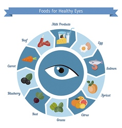 Healthy eyes foods infographics vector