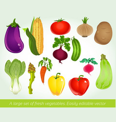 A large set of fresh vegetables easily editable vector