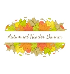 Autumn header banner with hand drawn fallen leaves vector