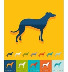Flat design greyhound vector