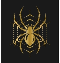 Golden spider and web vector
