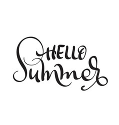 Hello summer text isolated on white background vector