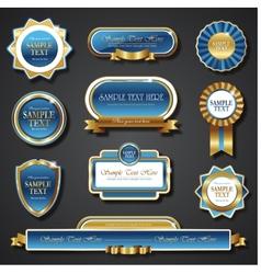 Vintage blue gold frame banners vector image