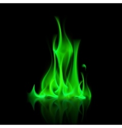 Green Magic Fire Flame Bonfire vector image