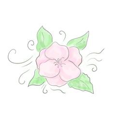 Decorative flower sketch vector image