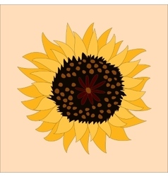 Sunflower icon - vector