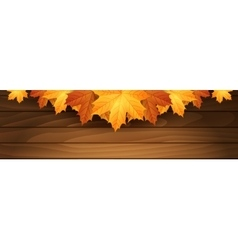Border of autumn maples leaves on a wooden vector