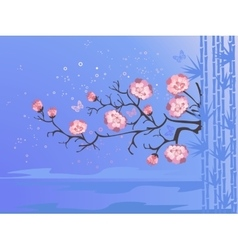 cherry blossoms for your design vector image