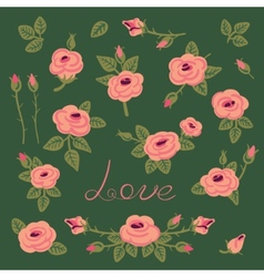Set of vintage roses for design vector image vector image