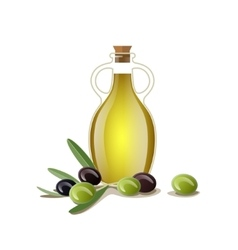 Bottle of oil with green and black olives vector