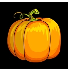 Cartoon pumpkin isolated vector