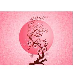 Cherry blossom spring nature scene vector