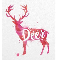 Painted animals deer vector image