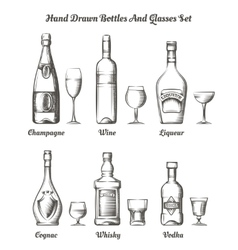 Different alcohol bottles and glasses vector