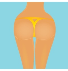 Sexy woman big booty girl in bikini vector