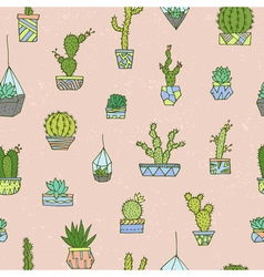 Cactuses succulents pattern vector