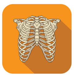 Ribs flat icon orange vector