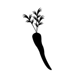Carrot vegetable nutrition vitamin food silhouette vector