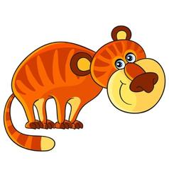 Tiger Cartoon african wild animal character vector image