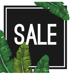 Sale tropical summer poster with jungle leaves in vector