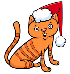 Cat or kitten on christmas cartoon vector