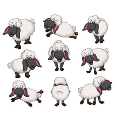Nice set of cartoon sheep for your design vector