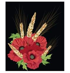 Poppy flowers and ear of wheat vector image