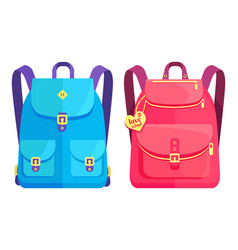 Rucksacks unisex in blue and pink with pockets vector