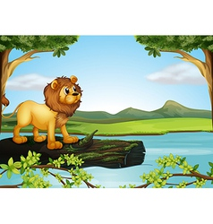 A lion above a trunk with algae vector image