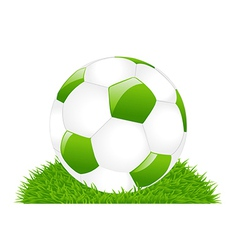 Green soccer ball on grass vector